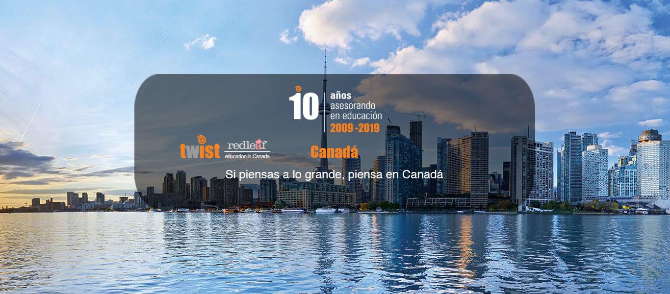 Toronto Twist Redleaf